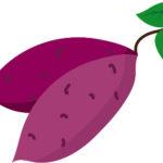 サツマイモの栽培方法