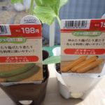 ズッキーニの栽培方法
