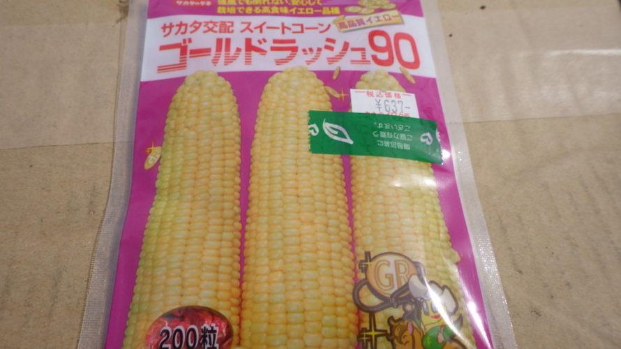 トウモロコシ(ゴールドラッシュ90)の栽培方法