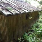 【30万円】で買った山小屋!くさって穴の 開いた「かべ」を修復